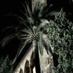 """Palma de Mallorca 03"" by jocopix"