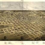 """""""1867 Springfield, IL Bird"""