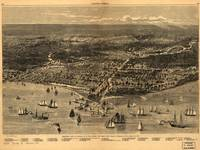 Chicago, IL As It Looked Before the Great FIRE Pan