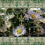 """""""Penny Postcard Rococo"""" by RCdeWinter"""