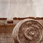 """Round Bales"" by BeautifullyScene"