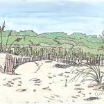 """Myrtle Beach SC 3"" by DanAnderton"