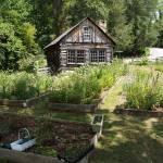 """Studio Garden at Penland"" by scottblandphotography"