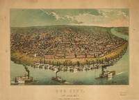 1859 St. Louis, MO Birds Eye View Panoramic Map