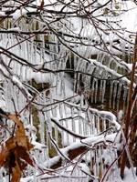 Icicle rows