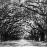 """""""Dreams of the Old South"""" by Groecar"""