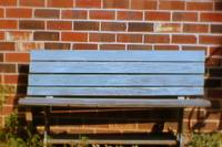 The Bluest Bench