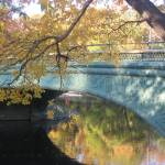 """""""A Bridge in Prospect Park 1"""" by alicia954"""