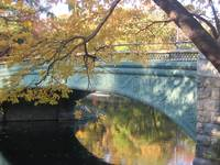 A Bridge in Prospect Park 1