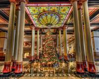 Lighted Driskill Tree