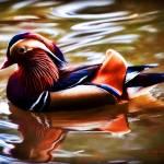 """Mandarin Duck 2"" by johncorney"