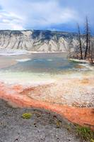 Mammoth Hot Springs (15)