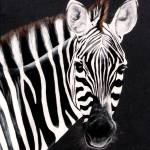 """ZEBRA #1  painting"" by AnimalsbyDiDi"
