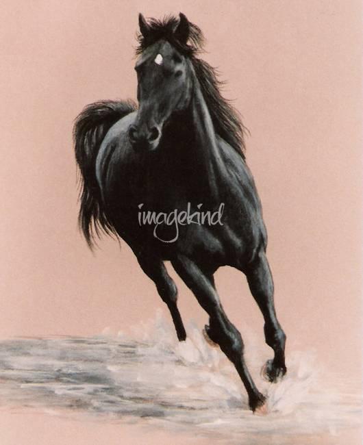 black arabian horse art Fishing Pole Clip Art Black and White Fishing Lure SVG