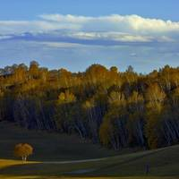 Autumn Colors in Inner Mongolia