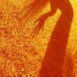 """""""Autumn Spirit"""" by sky2urth"""