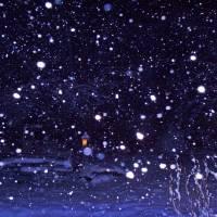 SnowWinter gallery
