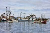 Fishing Boats Working