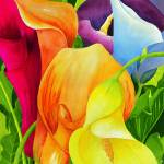 """Calla Lily Rainbow"" by janlan44"