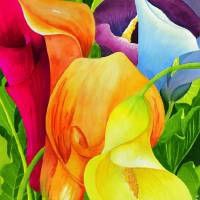 Calla Lily Rainbow Art Prints & Posters by Janis Grau
