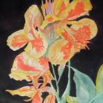 """Orange And Yellow Canna Lily on Black"" by wot53"