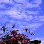 """""""Travel to Mexico 2"""" by anissa_lowe"""