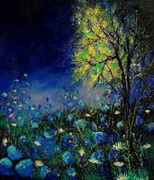 blue poppies and daisies 67