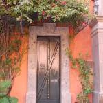 """door with vines in the morning light"" by michellelove"