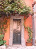 door with vines in the morning light