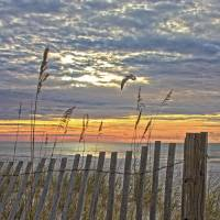 Perdido Key Dawn Art Prints & Posters by Mike Davison