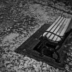"""Bench"" by jfdupuis"