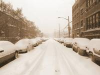 Bronx Street in the Winter