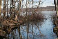 Rockland Lake reflection