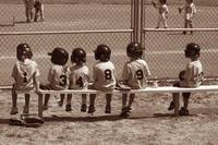 Little League Bench