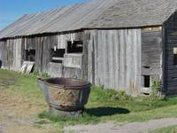 Barn and trough