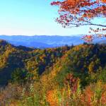 """Autumn In The Great Smokies 109"" by photographybydonna"