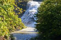 Falls in Ithaca