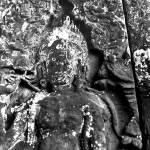 """Stone and Lace"" by VAphotoart"