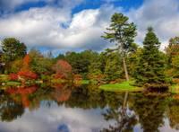 Autumn Gardens by Marcus Panek