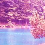 """Lake"" by charlottedude"