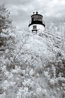 Owls Head Lighthouse II