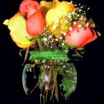 """Roses In Vase"" by budo"