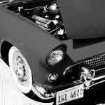 """Classic T-Bird in Black and White"" by tonybianchi"