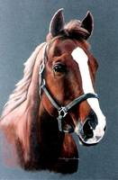 SORREL HORSE painting
