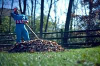 Even Captain America has to rake the leaves