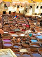 The Dye Vats at Fez