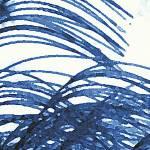 """""""Blue Grass"""" by VAphotoart"""