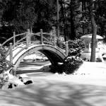 """Japanese Garden in Winter"" by tonybianchi"