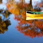 """""""Autumn Tender"""" by Benjaminjames"""