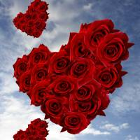 Flying Valentine For Rose Art Prints & Posters by garlanddunston